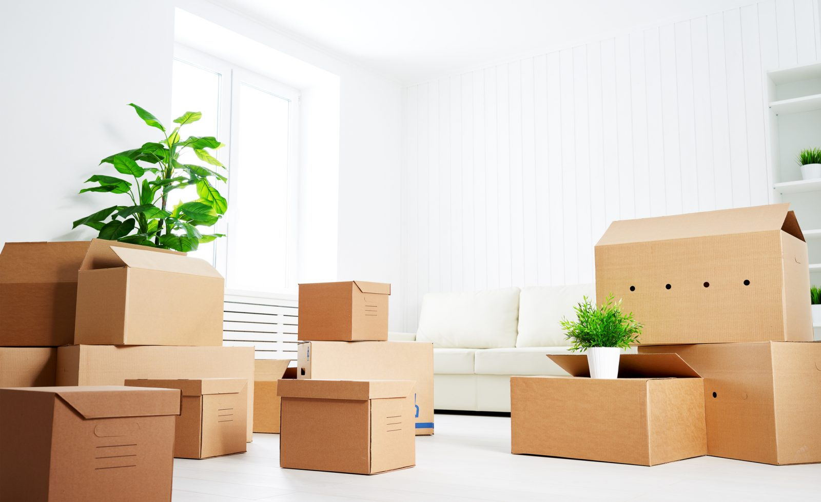 boxes in new home after relocating to cumming